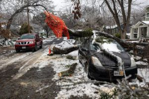 NEW YORK TIMES                                 A fallen tree in Austin, Texas, damaged a vehicle on Thursday.