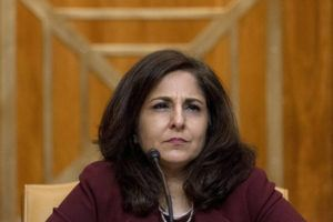 ASSOCIATED PRESS                                 Neera Tanden, President Joe Biden's nominee for Director of the Office of Management and Budget, appears beofre a Senate Committee on the Budget hearing on Capitol Hill in Washington on Feb. 10.