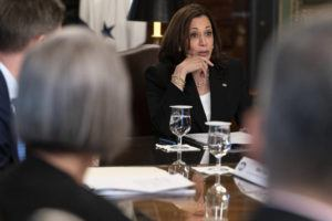 ASSOCIATED PRESS                                 Vice President Kamala Harris attends a meeting with business CEO's about economic development in the Northern Triangle today from her ceremonial office on the White House complex in Washington.