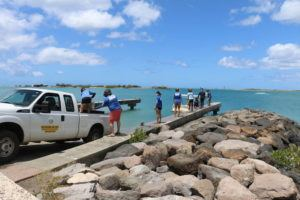 COURTESY DLNR                                 The state is working quickly to save broken corals found in the wake of a dredging job at Honolulu Harbor.