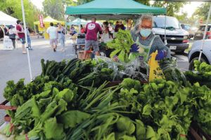 JAMM AQUINO / 2021                                 The KCC Farmers Market will be closed this Saturday, as well as Sept. 4, 11, and 18.