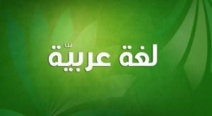 لغة عربية سنة ثانية متوسط