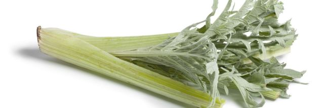 Risultati immagini per cardi verdura