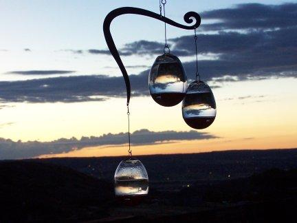 Dawn feeders