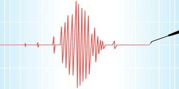 Cutremur în Sistemul Corupt. OUG Marţi 13 a fost atacată la CCR