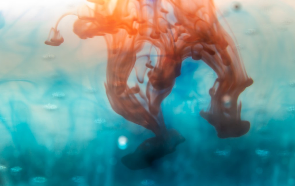 starkel nutrition polycystic ovary syndrome blog seattle