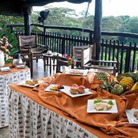 Treetops Lodge meal