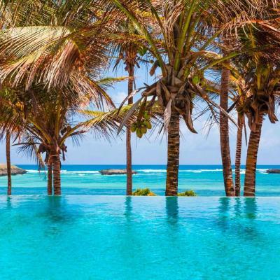 Lily Palm Resort