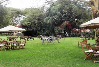 Lake-Naivasha-Country-Club-4
