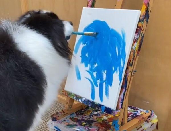 Incroyable ! Ce chien sait peindre et c'est impressionnant