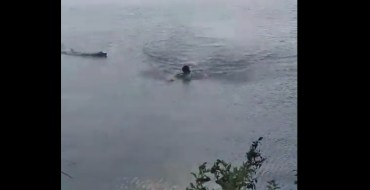 Grosse frayeur ! Attaqué par un alligator, cet homme échappe au pire