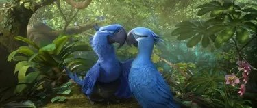 Blue and Jewel