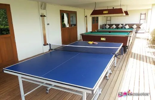 Table Tennis and Billiards