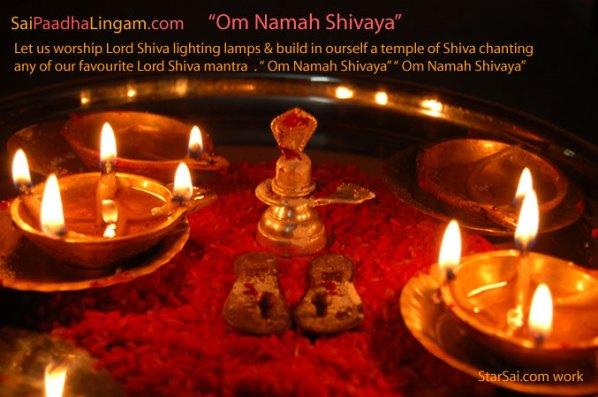 lord shiva pooja sani pradosham