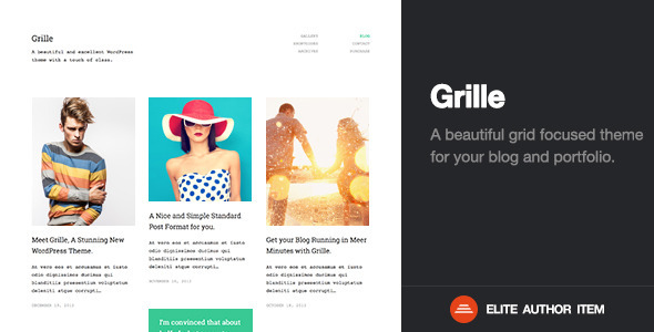 best portfolio themes for wordpress