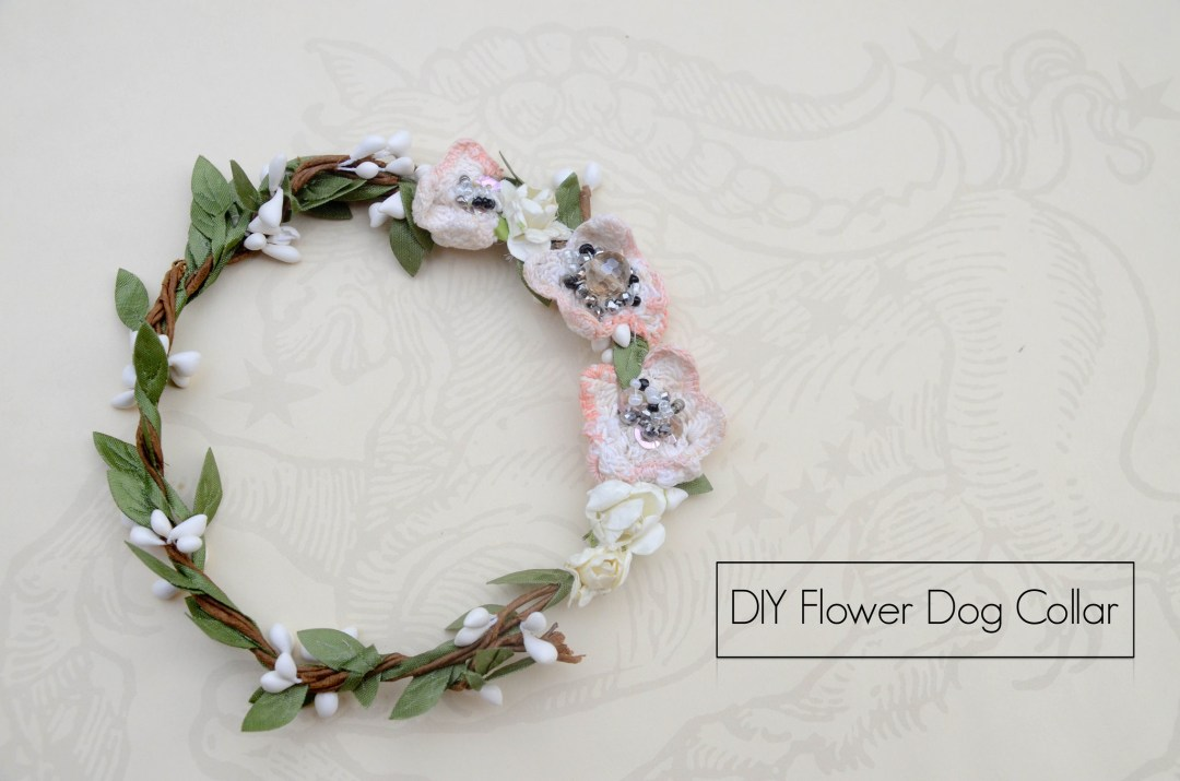 DIY wedding dog collar