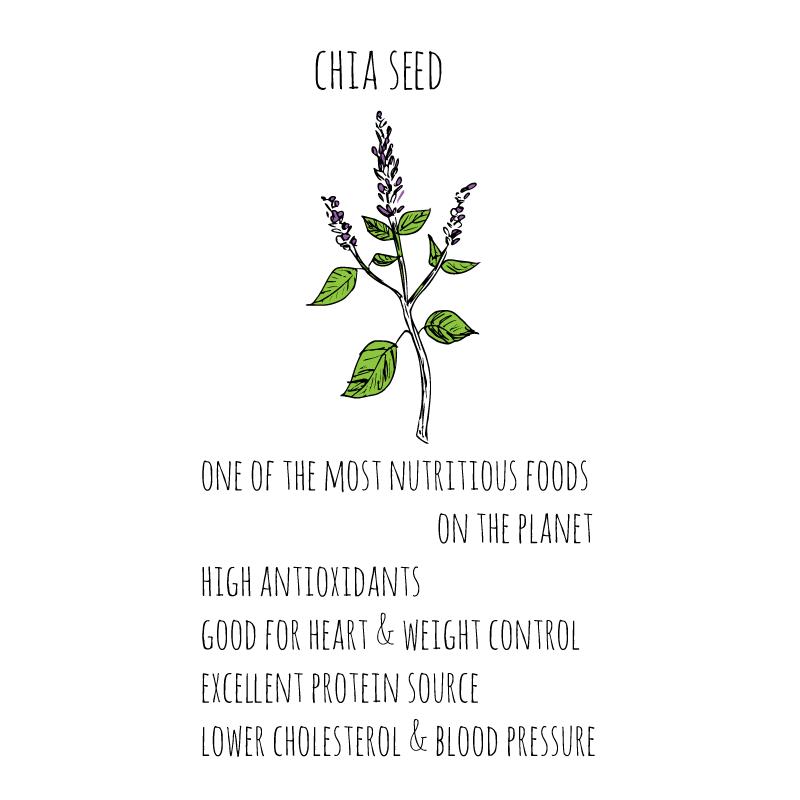 health-benefits-chia-seed-sq