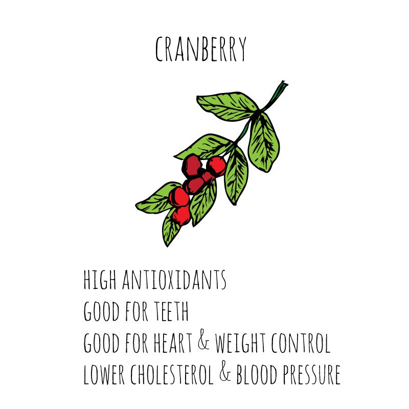 health-benefits-cranberry-sq