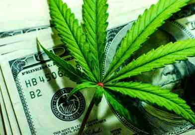 Here's Why It May Be Time to Invest in Marijuana Stocks