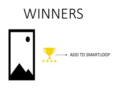 Tailwind Pinterest Looping Strategy winners