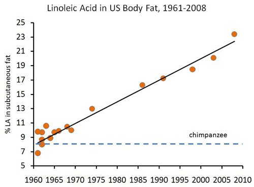 lineolic acid in US body fat low omega 3