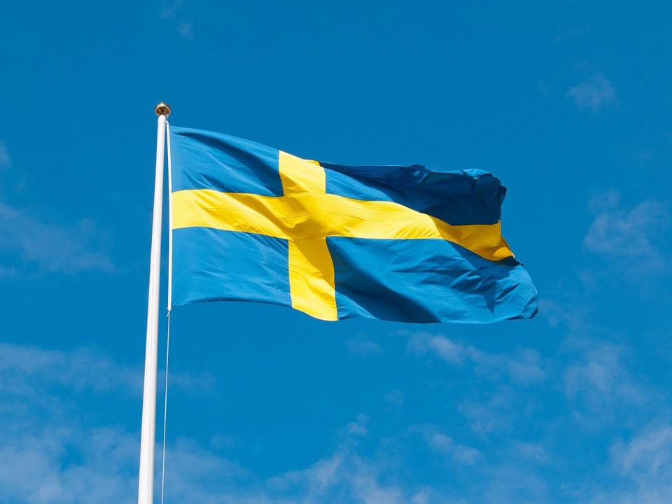 Sars-Cov-2,瑞典的真實經驗。經濟報告
