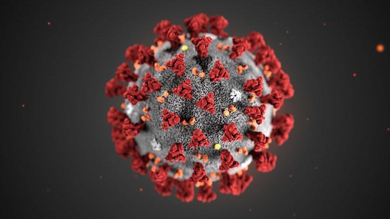 Covid-19, именно так влияют генетические и иммунологические аномалии
