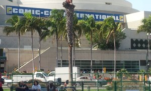 The convention center - main site for the San Diego Comic Con