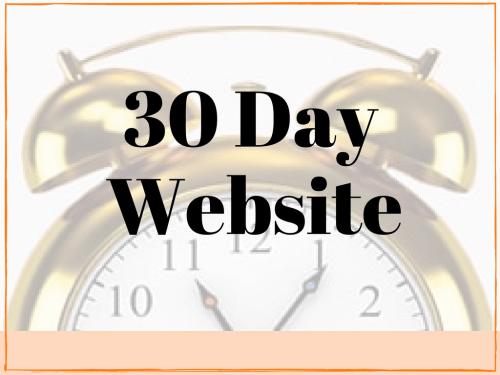 get new website in 30 day website