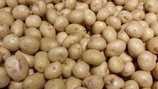 Image result for How to Start Irish Potato Farming in Nigeria
