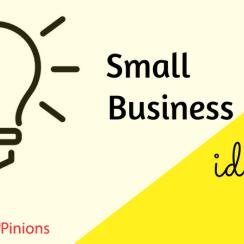 business ideas in marathi