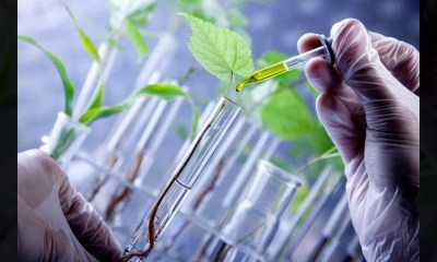 Best Biotechnology Startups in India,Startup Stories,Biotechnology Companies in India,Biotechnology Startups,Biotech Startups,Biotech Startups India,Top Biotech Startups 2019,Biotechnology Industry in India,Biotech Entrepreneurs