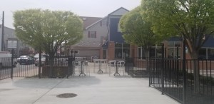 Walking Your Dog in Catonsville? Cool Off with A Drink on the State Fare Patio!