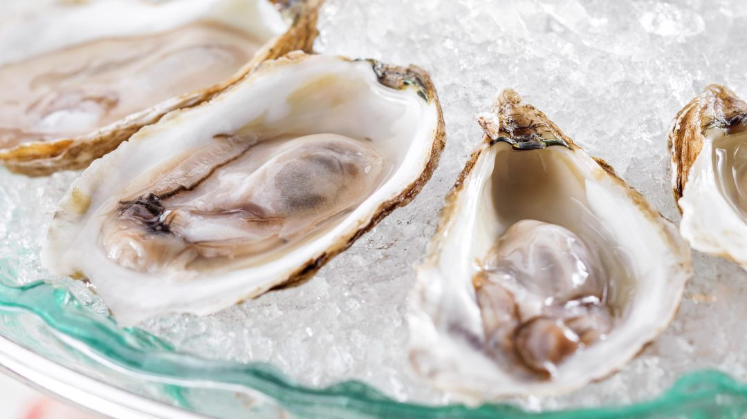 an image of fresh oysters on ice