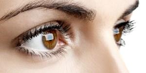 eye color distribution statistics