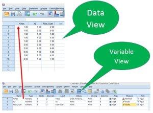 Hubungan Data View dan Variable View SPSS