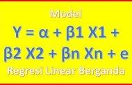 Penjelasan dan Tutorial Regresi Linear Berganda
