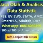 jasa analisis statistik 2018