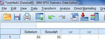 Cara Entri Data Uji T Paired dengan SPSS