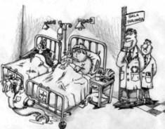 influenza-lucro