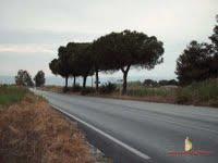 sp141 (image by Siponto.Blog.Spot)