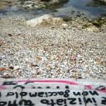 Vandalismo (image M.P.Telera)