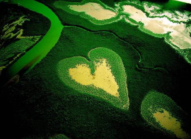 Ambiente (Ph: pannellienergiasolare.com)