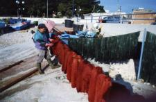 Febbraio 2010. Villaggio dei Pescatori Salvatore Bottalico detto pecuzze intento all'allestimento di reti da posta per la pesca delle seppie