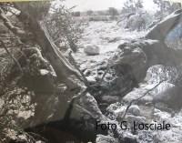 Allegato n. 9 Alluvione 1972