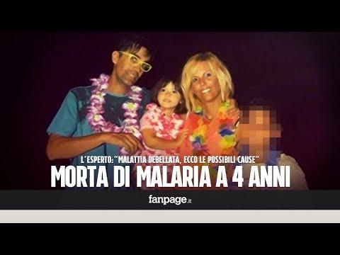 Sofia, morta di malaria a 4 anni