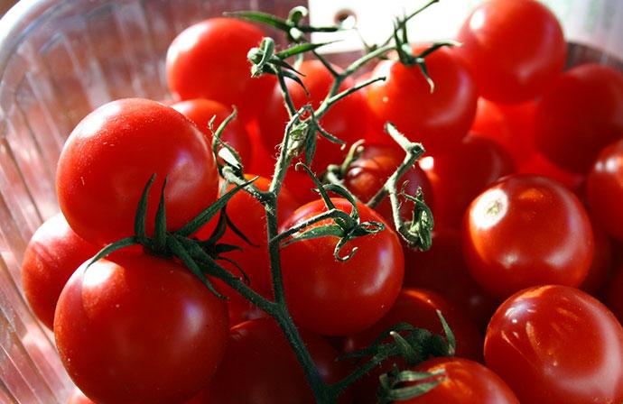 Pomodoro di Pachino (ph lettere meridiane)