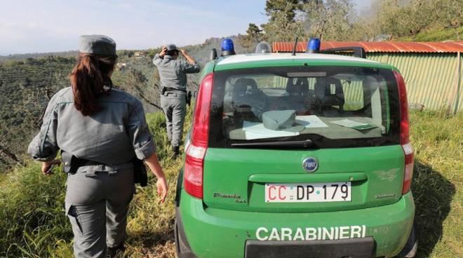 carabinieri-forestale-410028.660x368_54_3049