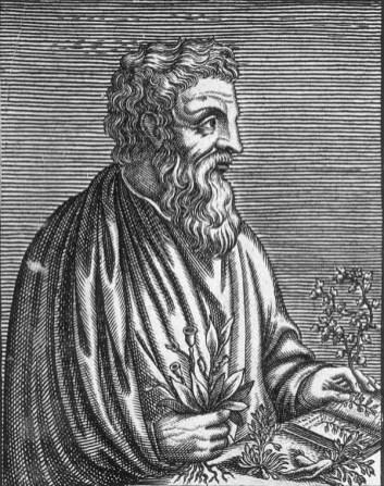 Dioscoride nell'antichità nel suo libro di botanica decanta il cappero