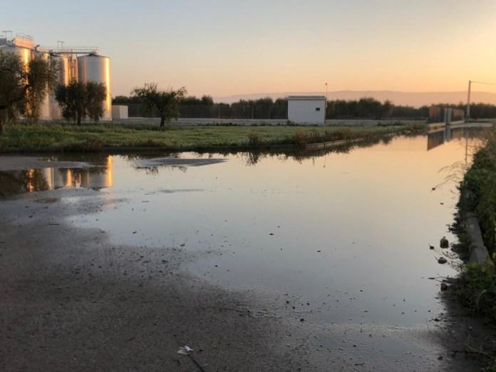 Grave attentato all'Antica Cantina: aperti i bocchettoni dei silos, migliaia di litri di vino dispersi nelle campagne. La condanna del Sindaco Miglio.